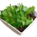 Salad Recipes, Salad Recipe, Indian Salad Recipes, Best Salad Recipe, Salad Recipe Information