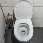 Toilet Maintenance Tips