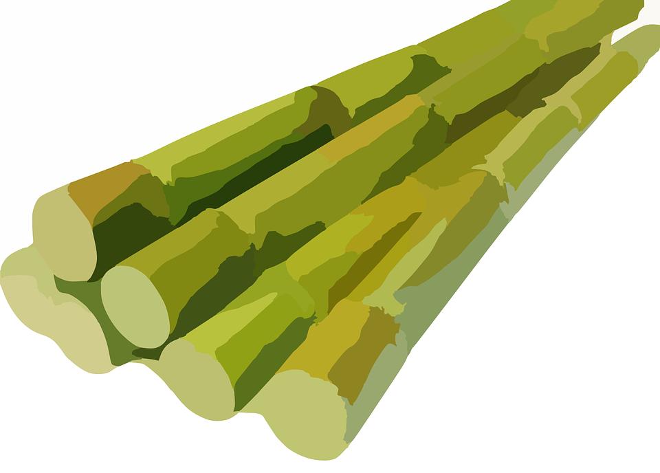 sugarcane-311914_960_720